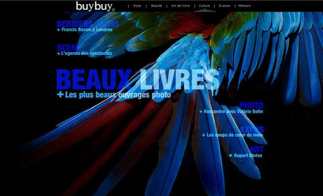 buybuy-home06